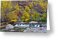 River Rapids In Zion Greeting Card