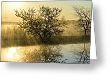 River Rays Greeting Card