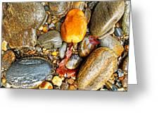 River Rocks 8 Greeting Card