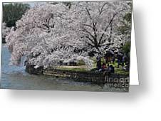 River Side  Greeting Card