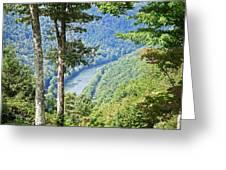 River Thru The Trees Greeting Card