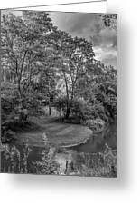 River Tranquility Monochrome Greeting Card