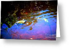 River Turtle Greeting Card
