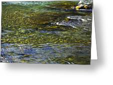 River Water 2 Greeting Card