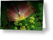 River Wildflowers Greeting Card