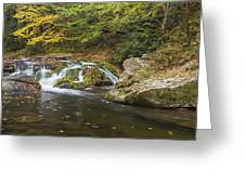 River With Color Greeting Card
