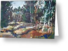 River Woods Greeting Card