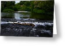 River Wye - In Peak District - England Greeting Card