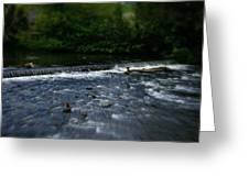 River Wye Waterfall - In Peak District - England Greeting Card
