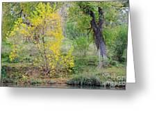 Riverbank Colors Greeting Card