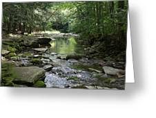 Riverbed Greeting Card