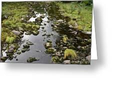 Riverbed  Greeting Card