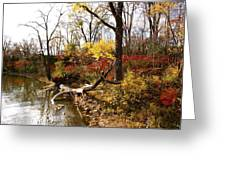Riverfront In Fall Greeting Card by Jocelyne Choquette