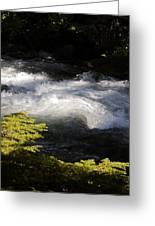 River's Ebb Greeting Card