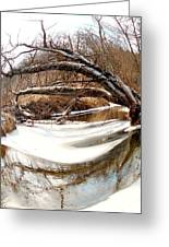 Rivers Eye Greeting Card by Sharon Costa