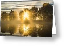 Riverside Morning Walks Greeting Card