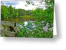 Rivier Du Nord In The Laurentians-qc Greeting Card