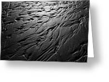Rivulets Greeting Card