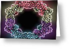 Rna Interference Viral Suppressor Greeting Card by Science Photo Library