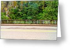 Road And Lush Green Forest Greeting Card
