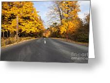 Road In Autumn Forest Greeting Card