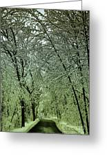Road In Snow Covered Forest Greeting Card