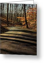 Road Into The Woods Greeting Card