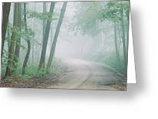 Road Passing Through A Forest, Skyline Greeting Card