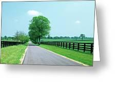 Road Passing Through Horse Farms Greeting Card