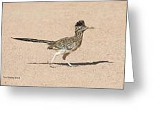 Road Runner On The Road Greeting Card