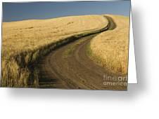 Road Through Wheat Field Greeting Card