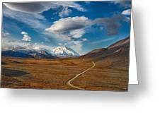 Road To Denali Greeting Card