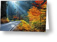 Road To Glory  Greeting Card