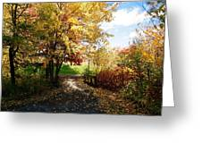 Road To Happyness Greeting Card by Jocelyne Choquette