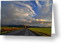 Road To Nowhere Greeting Card by JM Photography    Jim Mullholand