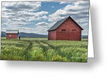 Road To Nowhere Greeting Card by Sandra Bronstein