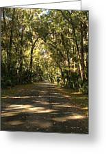 Road To The Enchanted Forest Greeting Card