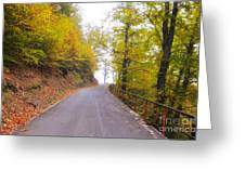 Road With Autumn Trees Greeting Card