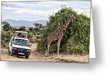 Roadside Attraction Greeting Card