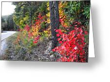 Roadside Fall Colors Greeting Card