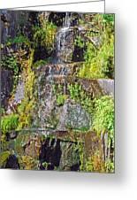 Roadside Waterfall. Mount Rainier National Park Greeting Card