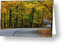 Roadway In Autumn In Brown County State Greeting Card