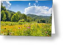 Roan Mountain State Park Greeting Card