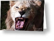Roar Greeting Card