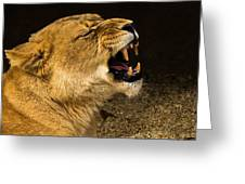 Roar Of A Lioness Greeting Card