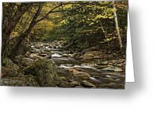 Roaring Branch Brook Greeting Card