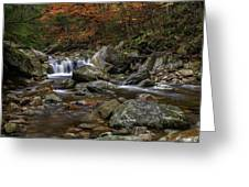 Roaring Brook - Sunderland Vermont Autumn Scene  Greeting Card