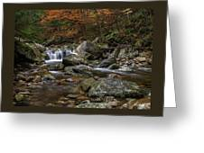 Roaring Brook - Sunderland Vermont Autumn Scene  Greeting Card