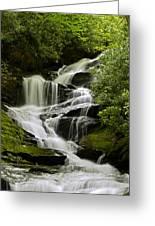 Roaring Creek Falls Greeting Card