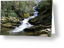 Roaring Fork Falls - Spring 2013 Greeting Card